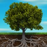 Longevity and Legacy: How to Have a Lasting Impact In Your Home, Your Community, Your World